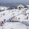 Best Ski Resorts in Korea