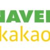 What is Naver and Kakao Talk?